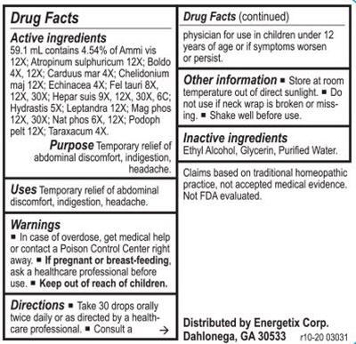 Energetix GB-Tone Supplement Facts