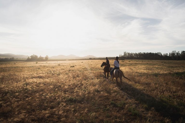 Two people riding horseback in a field
